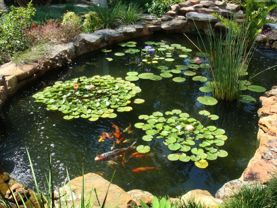 Koi pond waterproofing